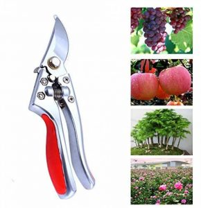 Cisailles à élaguer, GWCLEO Cisailles à ongles en acier inoxydable Cisailles à jardin à usage intensif Découpeuses à arbre Forets polyvalents pour jardinières. de la marque GWCLEO image 0 produit