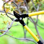 CISAILLES D'ÉLAGAGE PROFESSIONNELLES - Sécateurs à main résistants pour le jardinage sérieux - Tondeuses de jardin polyvalentes, coupantes rasoirs, taille-bordures, sécateurs et sécateur en acier de la marque Anytime Garden image 2 produit
