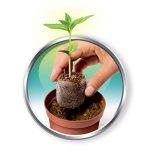 Clementoni 52110-Mon jardin botanique-Jeu scientifique de la marque Clementoni image 4 produit