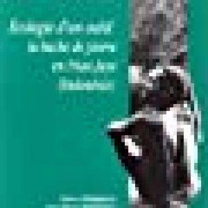 Écologie d'un outil : La hache de pierre en Irian Jaya (Indonésie) de la marque Pétrequin image 0 produit