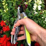 Davaon® Pro Sécateur Lot + Multi outil Aiguiseur – Moins d'effort 2 en 1 à cliquet enclume + ergonomique Bypass + aiguisoir pour outils de jardin et couteaux. Confort - haute qualité de la marque Davaon image 2 produit