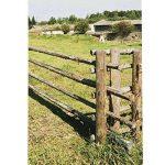 diamètre tarière pour clôture TOP 2 image 2 produit