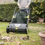 dmail–Chariot ramasse-feuilles de jardin de la marque D-Mail image 4 produit