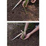 Gardtech Outil à Main traditionnel Garden Plantoir Plantoir à main avec manche en bois Poids léger de la marque Gardtech image 3 produit