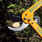 GRÜNTEK Cisaille Coupe-branches LEOPARD 540 mm, Sécateur à crémaillère et lame 78 mm. Ébrancheur Bypass avec 90 jours de garantie. de la marque GRÜNTEK image 3 produit