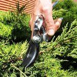 GRÜNTEK Sécateur de Jardin Professionnel SILVERCUT 230 mm, Bypass cisailles d'élagage de jardinage, lame 65mm. Qualité professionnelle. de la marque Grüntek image 3 produit
