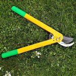GRÜNTEK Cisaille Coupe-branches LEOPARD 540 mm, Sécateur à crémaillère et lame 78 mm. Ébrancheur Bypass avec 90 jours de garantie. de la marque GRÜNTEK image 4 produit