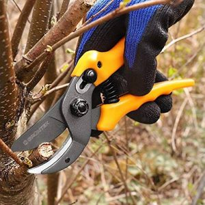 GRÜNTEK Sécateur à enclume Ciseaux de Jardin OSPREY 190 mm. Coupe branches jusqu'à 18 mm en acier japonais SK5 et coupe Bypass. PRIX de LANCEMENT! de la marque GRÜNTEK image 0 produit