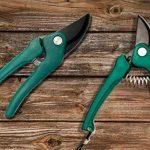 Home Tools. UE®–Sécateur Ciseaux Ciseaux de roses AST | pour le coupage et rognage de plantes, arbustes | avec ressort 18cm vert de la marque HomeTools.eu image 3 produit