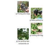 Jardin Sécateur à greffer kit Ensemble de branche de plante Twig Vigne arbres fruitiers Greffe Ciseaux de coupe Cisaille d'élagage Outil Omega-cut U-cut XL. de la marque AIBER image 2 produit