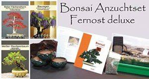 kit entretien bonsaï TOP 0 image 0 produit