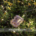Lumières 100Leds imperméables de cuivre de LED avec la télécommande, lumières de ficelle de la fée LED de 10m d'intérieur et extérieur pour Noël / mariage / partie IP65 (blanc chaud avec le cordon arg de la marque Lanteck image 1 produit