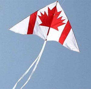 outil canadien TOP 11 image 0 produit