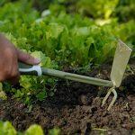 outil de jardinage binette TOP 11 image 1 produit