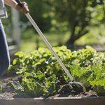 outil de jardinage binette TOP 9 image 4 produit