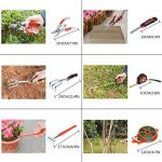 outil jardinage TOP 7 image 4 produit