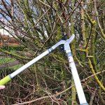 outil élagage arbre TOP 13 image 3 produit