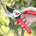 outil pour tailler les arbres TOP 6 image 3 produit