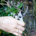outil pour tailler les arbres TOP 9 image 2 produit