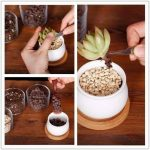 outils de jardin miniature TOP 4 image 3 produit