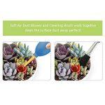 outils de jardin miniature TOP 4 image 4 produit
