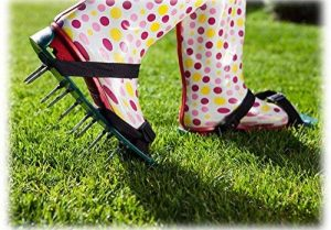 Pelouse Reniflard/Aérateur Sandales Chaussures Pointu de la marque Chums image 0 produit