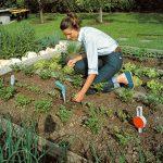 plantoir jardin TOP 0 image 1 produit