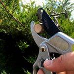 Pro 2 en 1 Sécateur de jardin à cliquet et aluminium conventionnel - meilleur des deux- réduit l'effort et la tension de 50 % - affûté comme un rasoir pour des coupes précises -outil de jardinage durable pour l'élagage à la main de la marque Davaon image 2 produit