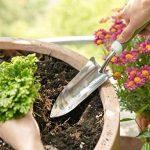 râteau pelouse TOP 7 image 4 produit