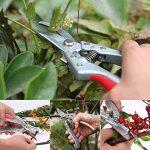 Sécateur de Jardin HOSPORT Ciseaux de Jardinage Lame en Acier SK-5 pour la Coupe de Fleurs, Vignes, Arbustes et Branches de la marque HOSPORT image 4 produit