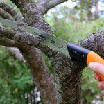scie pour élaguer les arbres TOP 0 image 3 produit