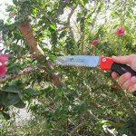 scie pour élaguer les arbres TOP 5 image 1 produit