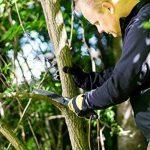 scie pour élaguer les arbres TOP 6 image 1 produit