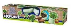 Ses France 25081 - Kit De Loisirs Créatifs - Herbes Aromatiques de la marque Ses France image 0 produit