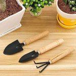 starnearby Ensemble de 3mini pelles Jardin et outil de griffe avec poignées en bois de la marque starnearby image 3 produit