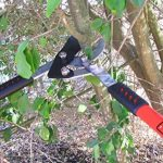 TABOR TOOLS GG11 Coupe-Branches à Lames franches pour Bois Vert, Revêtement Antiadhésif, Diamètre de Coupe: 4 1/2 cm de la marque TABOR TOOLS image 3 produit
