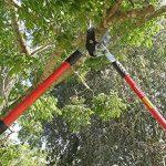 TABOR TOOLS GG12 Coupe-Branches à Enclume pour Bois Vert ou Dur, Revêtement Antiadhésif, Diamètre de Coupe: 5 cm de la marque TABOR TOOLS image 3 produit