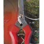 TABOR TOOLS K-77 Sécateur de précision, lame inox, ciseaux de jardin, ciseaux de récolte pour fruits, fleurs coupées, herbes, légumes hydroponiques et raisins. de la marque TABOR TOOLS image 1 produit