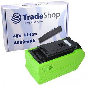Trade Boutique Premium Batterie Li-Ion, 40V/4000mAh/160WH pour Greenworks G de Max Taille-haie 22637t 22147t, tronçonneuse 2011720077, Ebrancheur 20157, Cultivateur 27087, compresseur 4100102remplace 2947229282260110220302260140229727 de la marq image 0 produit