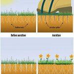 WARKHOME Chaussures aératrices de pelouse à crampon – pour aérer efficacement la pelouse – livrées avec 3 sangles réglables avec boucles métallique – taille universelle qui convient à tous de la marque WARKHOME image 2 produit